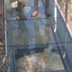 ガラスの橋1