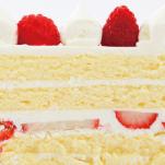 cake_ex-03