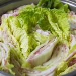白菜を使ったレシピ