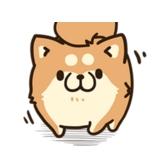ボンレス犬(爆)03_c_R