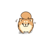 ボンレス犬(爆)03_b_R