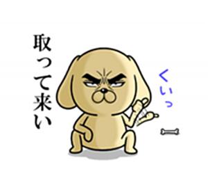 目ヂカラわんこ3