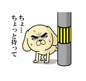 目ヂカラわんこ4