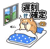 「カルピスウォーター」×もふ屋コラボ_15