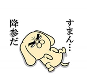 目ヂカラわんこ2