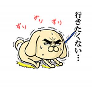 目ヂカラ☆わんこ6