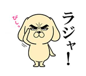 目ヂカラ☆わんこ2-4