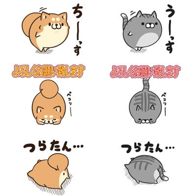 ボンレス犬猫vol.4