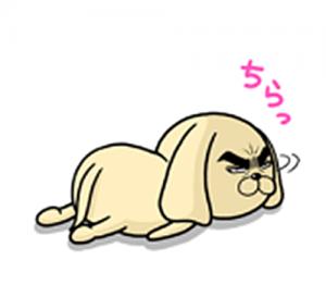 目ヂカラ☆わんこ2-6