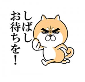 目ヂカラ☆わんこ2-3
