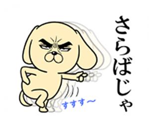 目ヂカラ☆わんこ2-9