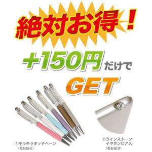 iPad mini pen