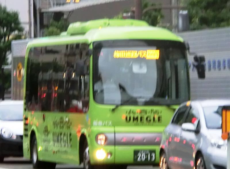 umegle-bus